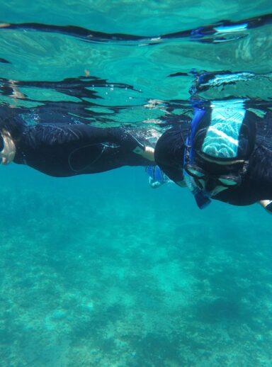 Découvrez les fonds marins de la Calanque de Port d'Alon
