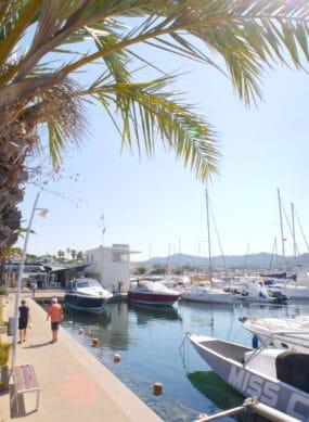 Vue du Nouveau port des Lecques Palmiers et bateaux